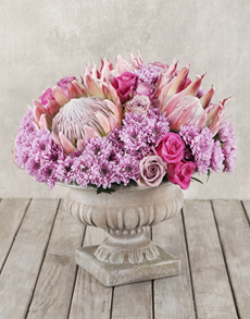 flowers: Proteas & Roses in Ceramic Pot Pedestal!