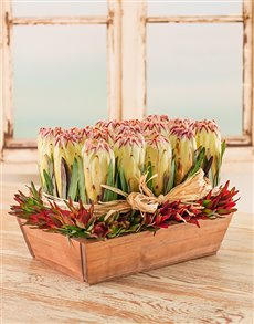 flowers: Chic Protea Arrangement in Tray!