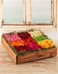 flowers: Roses, Mini Gerberas & Sprays in a Wooden Crate!