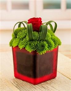 flowers: Green Sprays and Rose Vase!