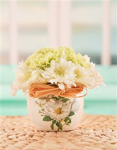 flowers: Carnations & Sprays in Pottery!