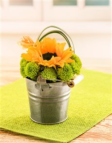 flowers: Sunflower in Petite Pail!