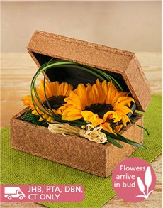 Picture of Sunflowers in a Wooden Box!