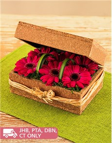 flowers: Pink Gerberas in a Box!