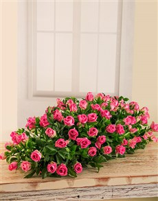 flowers: Pink Rose Coffin Display!