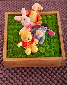flowers: Winnie the Pooh and Friends Flower Box!