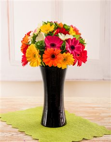 flowers: Mixed Gerberas in a Black Vase!