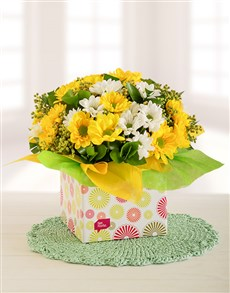 flowers: Yellow and White Sprays in a Box!