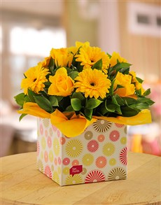flowers: Yellow Gerbera & Rose Circle Box!