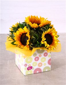 flowers: Sunflowers in Circle Box!