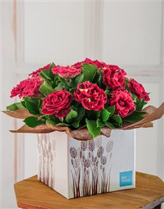 flowers: Magical Abracadabra Rose Box !