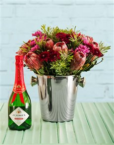 flowers: Protea Perfection!
