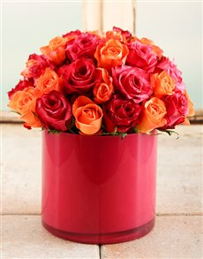 flowers: Fire Star Rose Vase!