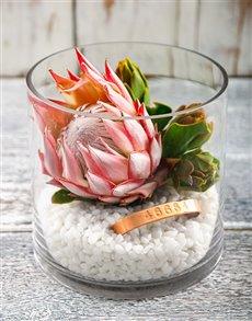 flowers: 46664 Protea Fire Vase!