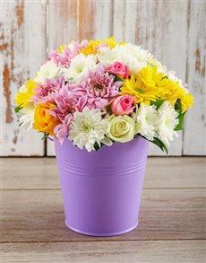 flowers: Purple Elegance!