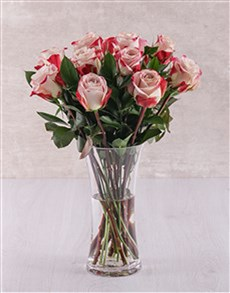 flowers: Candy Cane Rose Vase!