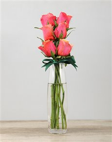 gifts: Cherry Brandy Roses in a Bullet Vase!