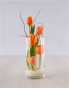 flowers: Tulips in Cylinder Vase!