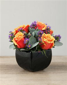 flowers: Cherry Brandy Roses in Black Glazed Vase!