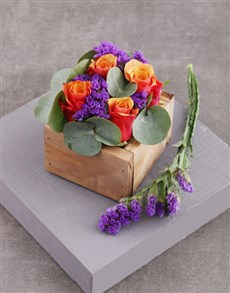 flowers: Cherry Brandy Roses in Square Wooden Crate!