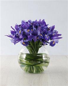 flowers: The Iris fish Bowl!