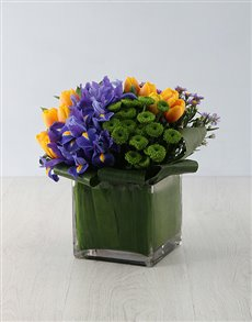 flowers: Extravagant Iris & Tulip Treat!