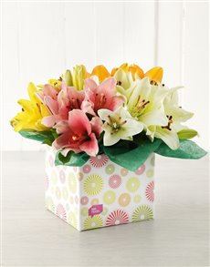 flowers: Mixed Asiflorum Lily Box!