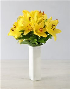 flowers: Yellow Asiflorum Lilies in a White Vase!