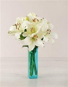 flowers: White Asiflorum Lily Vase!
