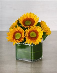 flowers: Green Button Sunflower Square Vase!