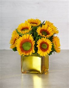 flowers: Green Button Sunflowers in Gold Vase	!