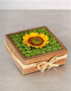 flowers: Green Button Sunflower Crate!