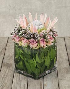 flowers: King Protea Symphony Vase!
