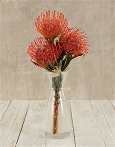 flowers: Pincushion Proteas in Elegant Vase!