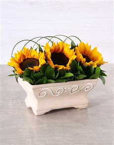 flowers: Windowsill Sunflowers!