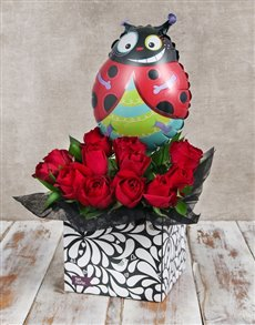 gifts: Ladybug Balloon and Red Rose Box!