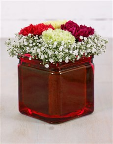 flowers: Mixed Carnations and Million Star Vase!