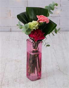flowers: Mixed Carnations in Straight Vase!
