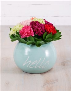 flowers: Mixed Carnations in Hello Pot!