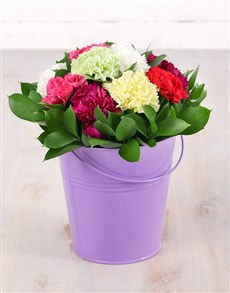 flowers: Mixed Carnations in Tin Bucket!