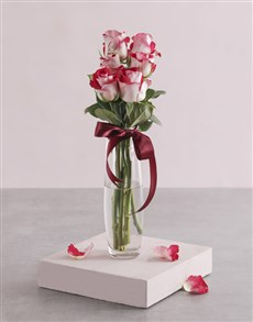 flowers: Variegated Roses in Tall Bullet Vase!