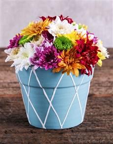 flowers: Sprays in Blue Pottery!