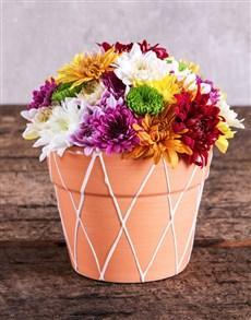 flowers: Sprays in Orange Pottery!