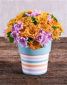 flowers: Sprays in Blue and Orange Pottery!