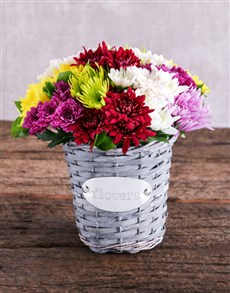 flowers: Mixed Sprays in Grey Basket!