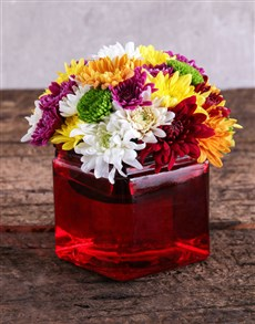 flowers: Sprays in Square Red Vase!