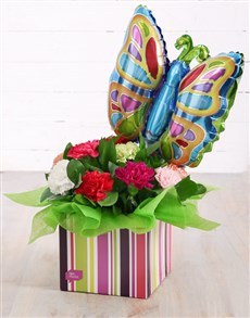 flowers: Carnations and Butterfly Balloon in Striped Box!