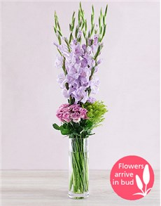 gifts: Purple Gladioli with Roses and Golden Rods!