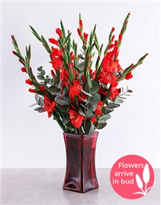 flowers: Red Gladioli in Red Square Vase!