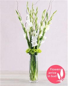 flowers: White Gladiolus Vase!